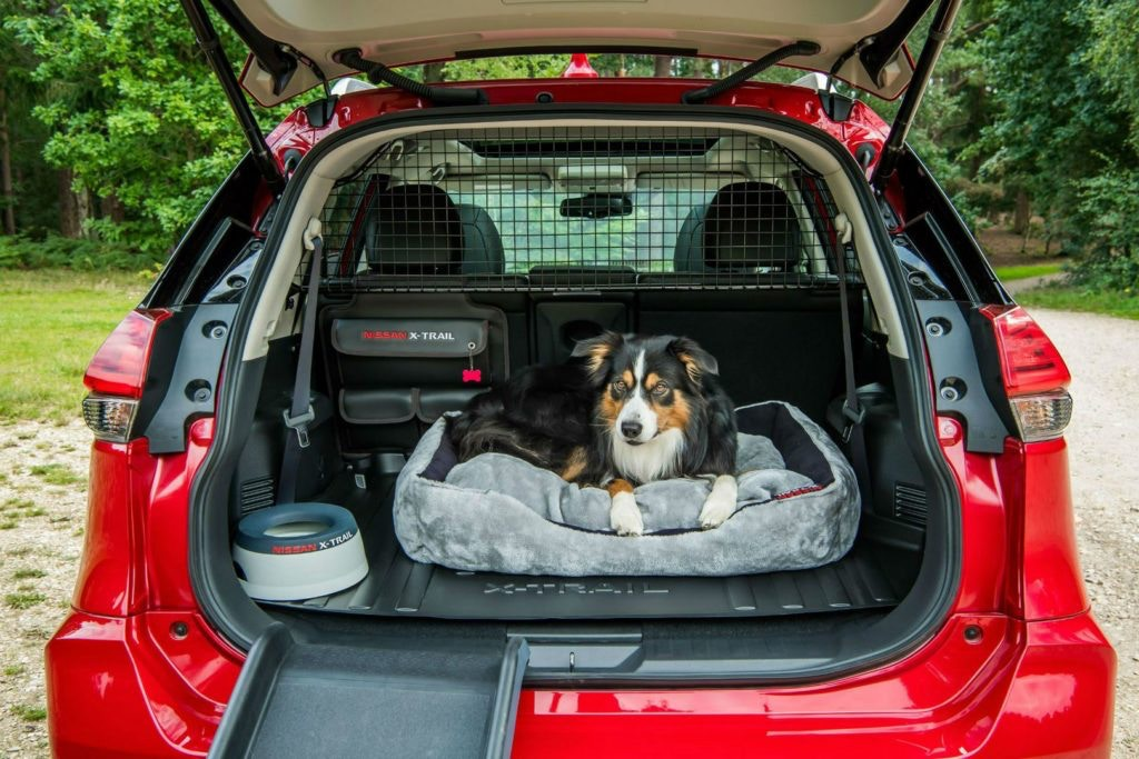 Nissan have the Paw Pack set of accessories to make sure your dog travels in comfort.